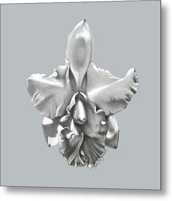 Cattleya I - Sweet Dreams Metal Print by Joan Garcia