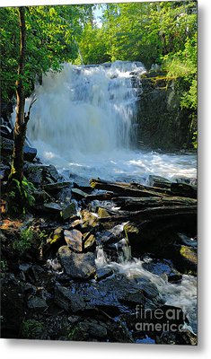Cattyman Falls 2 Metal Print by Larry Ricker