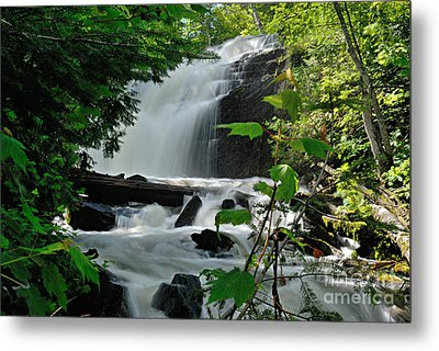 Cattyman Falls Metal Print by Larry Ricker