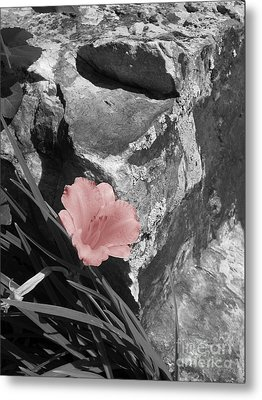 Caught Between A Rock And A Hard Place Metal Print
