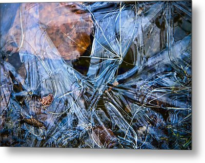 Caught In Ice Metal Print