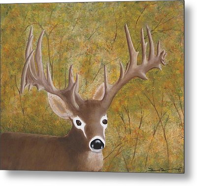 Caught In The Headlights Metal Print by Tim Townsend