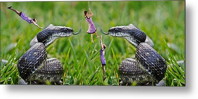 Caught In The Middle Metal Print by Betsy Knapp