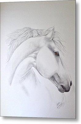 Cavallo Metal Print