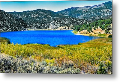 Cave Lake Metal Print by Robert Bales