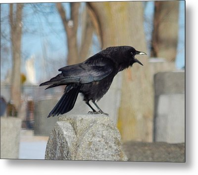 Caw Caw Caw Metal Print by Gothicrow Images