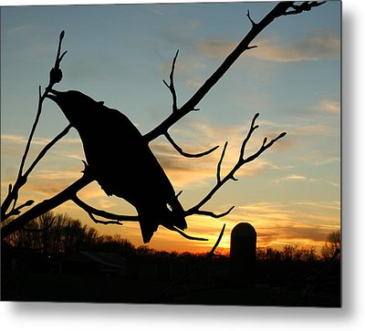 Cawcaw Over Sunset Silhouette Art Metal Print