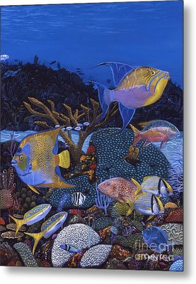 Cayman Reef 1 Re0021 Metal Print by Carey Chen