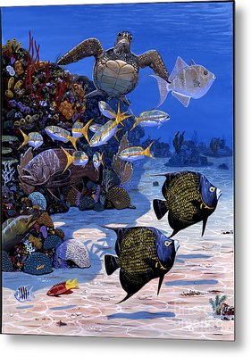 Cayman Reef Re0024 Metal Print by Carey Chen