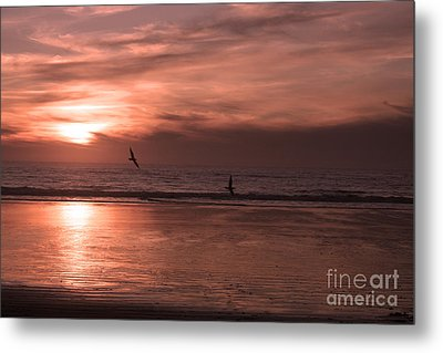 Cayucos Beach With Seagulls Metal Print