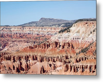Cedar Breaks Up Close 3 Metal Print