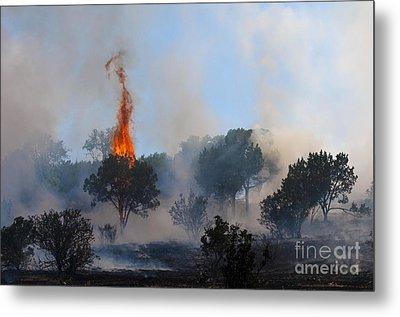 Cedar Fire Metal Print by Richard Mason