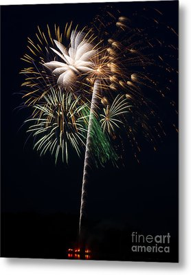 Metal Print featuring the photograph Celebration by Dale Nelson