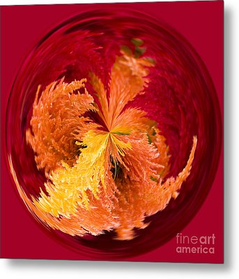 Celosia On Fire Metal Print