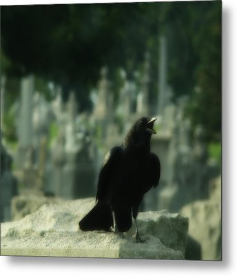 Cemetery Corvidae As It Caws Metal Print by Gothicrow Images