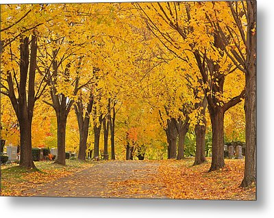 Cemetery In Autumn Metal Print by Gail Maloney
