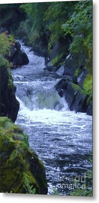 Metal Print featuring the photograph Cenarth Falls by John Williams