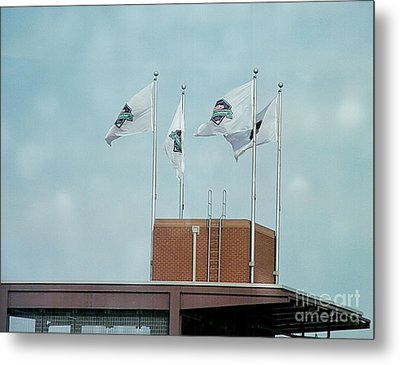 Center Field Flags Metal Print by Terry Weaver