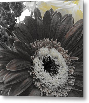 Centerpiece Metal Print by Photographic Arts And Design Studio