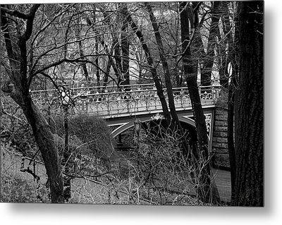 Central Park 2 Black And White Metal Print by Chris Thomas