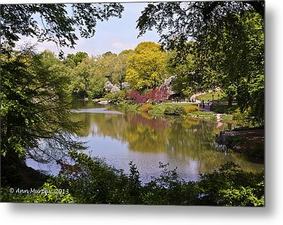 Metal Print featuring the photograph Central Park Landscape by Ann Murphy