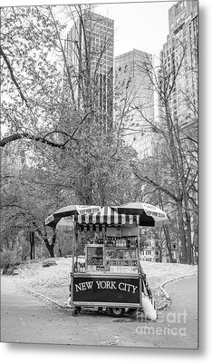 Central Park Vendor Metal Print