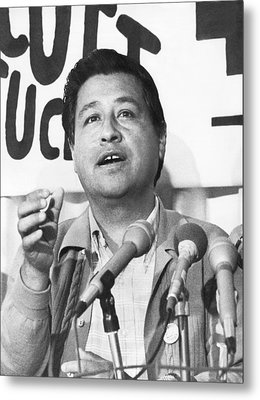 Cesar Chavez Announces Boycott Metal Print by Underwood Archives
