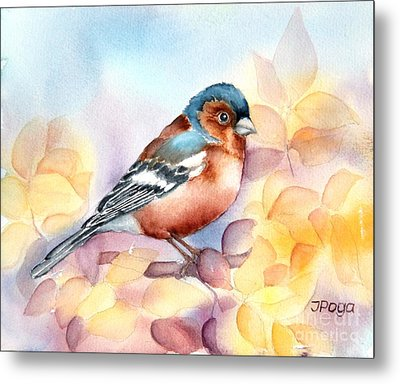 Chaffinch 3 Metal Print by Inese Poga