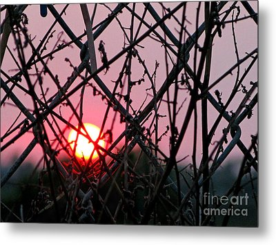 Metal Print featuring the photograph Chain Link Sunset by Jennie Breeze