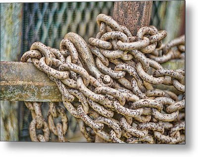Chained Up Metal Print by Heather Applegate