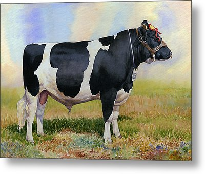 Champion Friesian Bull Metal Print by Anthony Forster