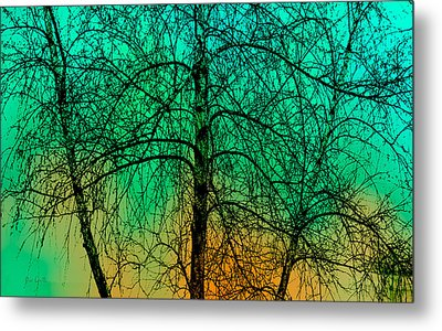 Change Of Seasons Number Tw0 Metal Print