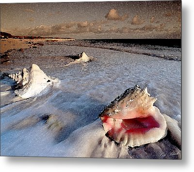 Changing Tide Metal Print by Cole Black