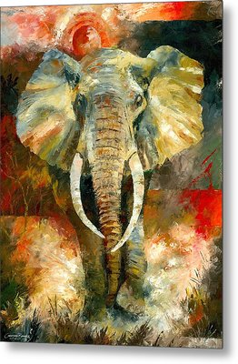 Charging African Elephant Metal Print by Christiaan Bekker