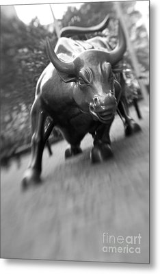 Charging Bull 2 Metal Print by Tony Cordoza
