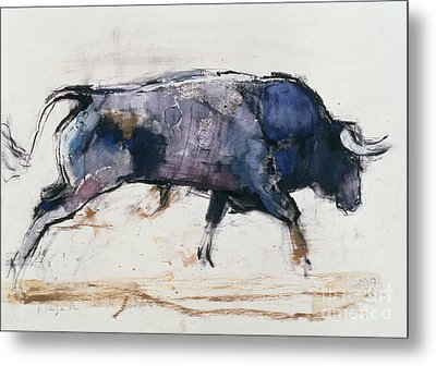 Charging Bull Metal Print by Mark Adlington