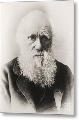 Charles Darwin Metal Print by English School