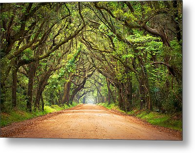 Charleston Sc Edisto Island - Botany Bay Road Metal Print by Dave Allen