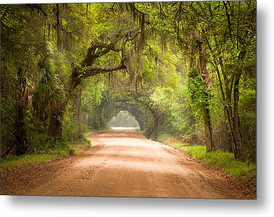 Charleston Sc Edisto Island Dirt Road - The Deep South Metal Print by Dave Allen