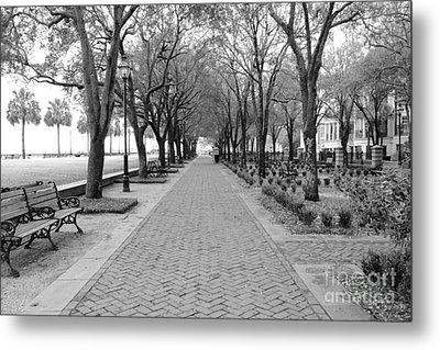 Charleston Waterfront Park Walkway - Black And White Metal Print by Carol Groenen