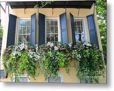 Charleston Window Box Flower Photography - Charleston Yellow Blue Green Floral Window Boxes Metal Print by Kathy Fornal