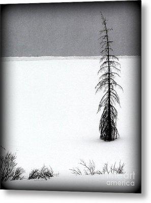 Charlie Brown's Christmas Tree Metal Print