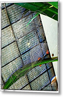 Charlotte's Web Metal Print by Meagan Hoelzer