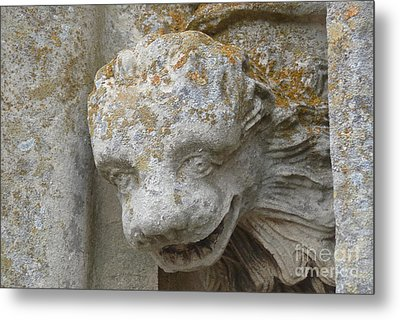Metal Print featuring the photograph Chartres Cathedral Carved Head by Deborah Smolinske