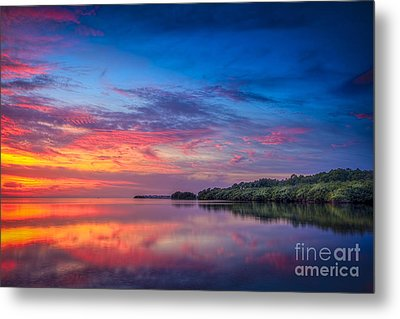 Chasing The Light Metal Print by Marvin Spates