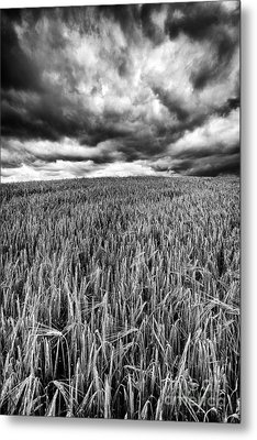 Chasing The Storm Metal Print by John Farnan