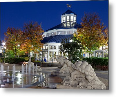 Chattanooga Park At Night Metal Print