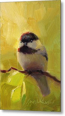 Chatty Chickadee - Cheeky Bird Metal Print by Karen Whitworth