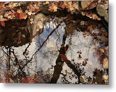 Cheaha Wilderness Reflection Alabama Metal Print by Mountains to the Sea Photo