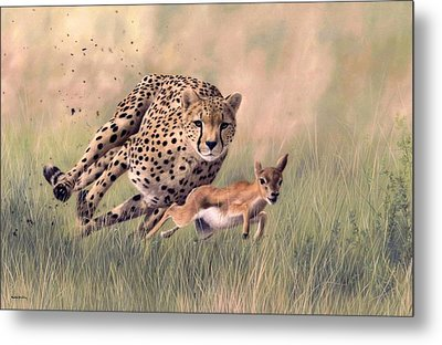 Cheetah And Gazelle Painting Metal Print by Rachel Stribbling
